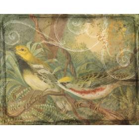 Songbirds & Scrollwork II