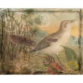 Ornamental Pattern & Bird II
