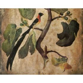 Antique - Fig Tree With Bird I