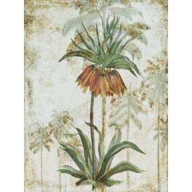 Exotic Palm II