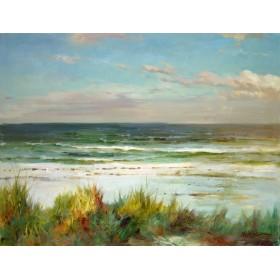 Undisturbed Coast