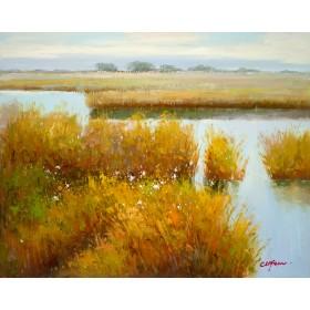 Marsh At High Water
