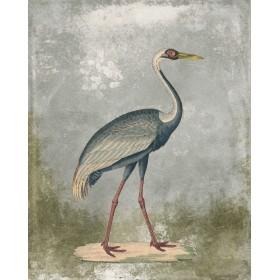 Antique Birds - Crane I