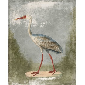 Antique Birds - Crane II
