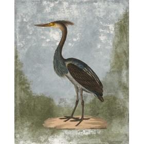 Antique Birds - Crane IV