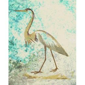 Antique Birds - Green Heron