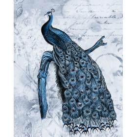 Antique Peacock II