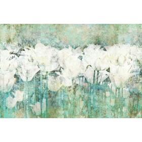 Abstract Tulips I